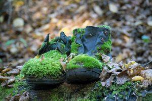 Zarastené topánky