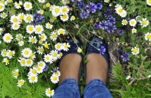 Nohy v tráve